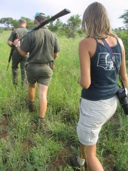 Walking Safari Kruger NP AFrica