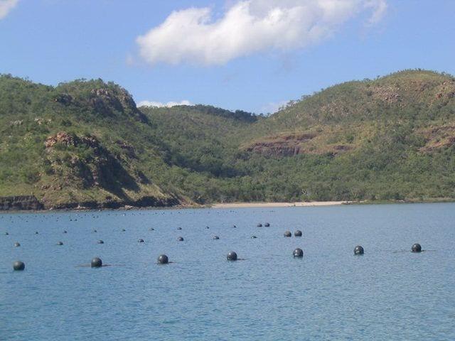 Port George C pearl farm Kuri Bay