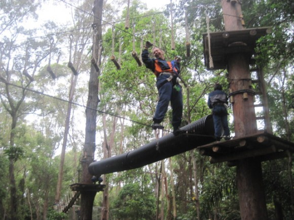 High ropes challenge Currumbin wildlife sanctuary