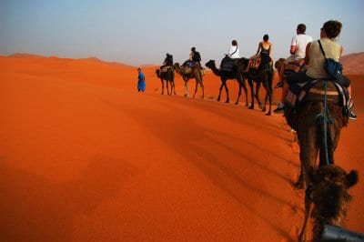 Guided tours and group travel