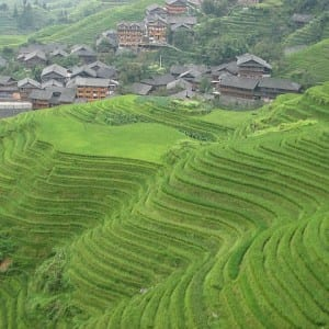 Travel Photo: Rice Terraces in Longshen, China