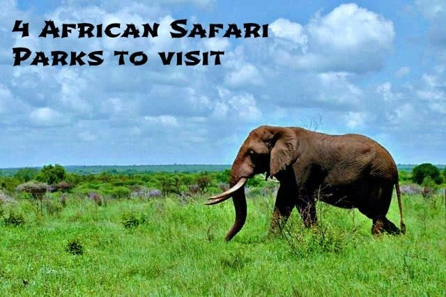 African safari game parks