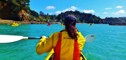 Photo - Sea Kayaking New Zealand