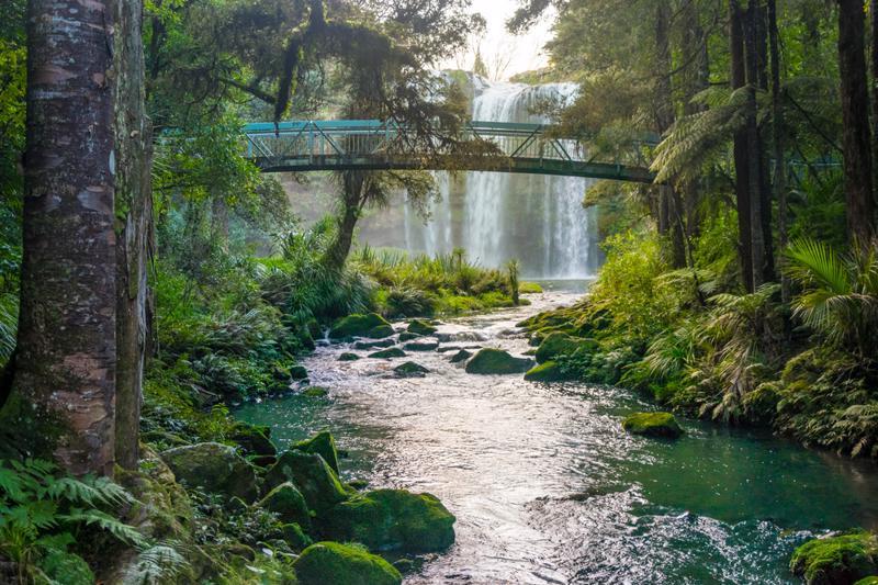 Magical Whangarei Falls, New Zealand