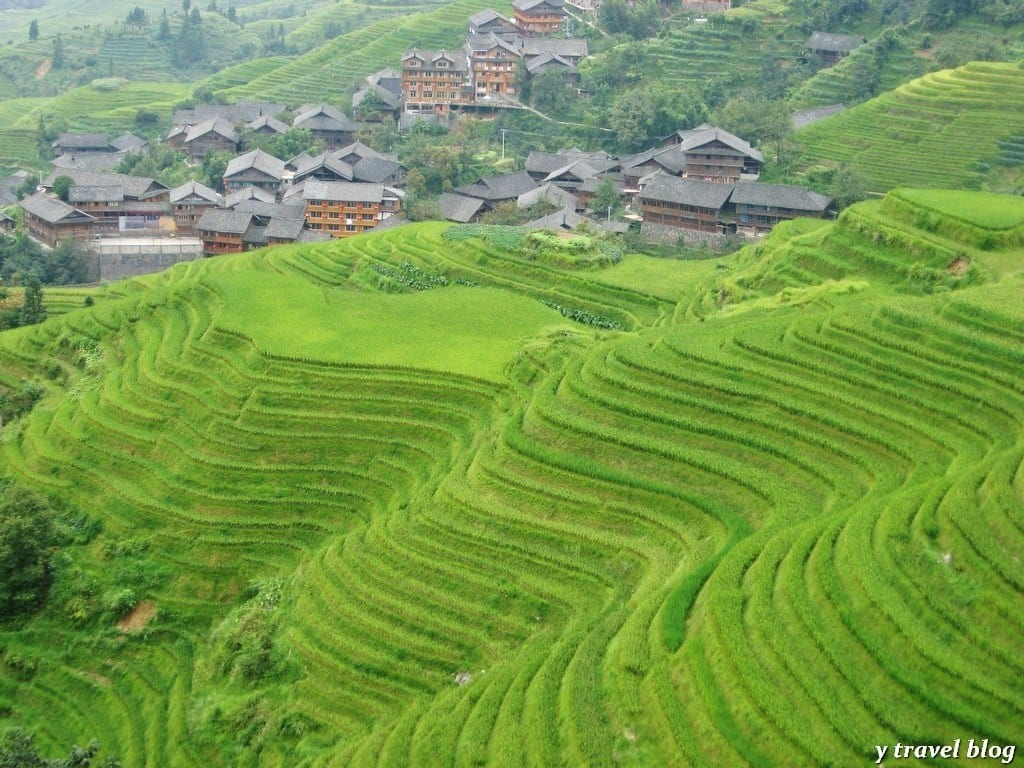 Longsheng rice terraces china for What are terraces