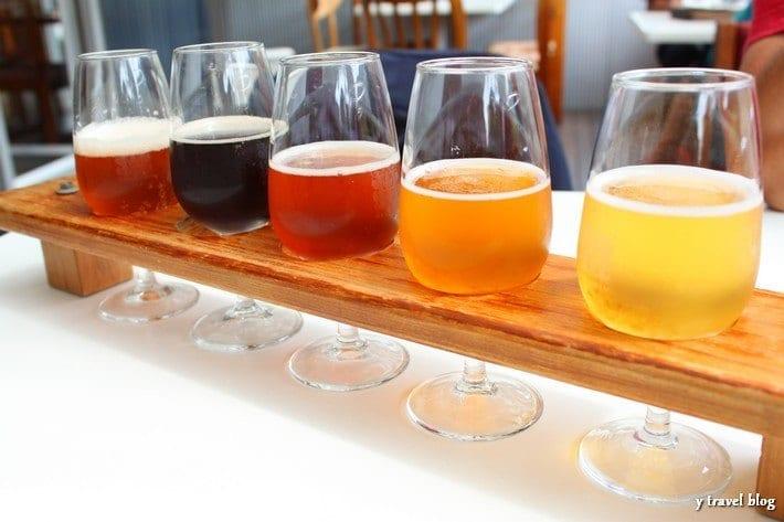 Beer sampling at Hallertau Brewery