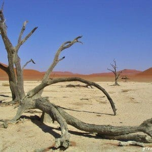 dead vlei namibia africa