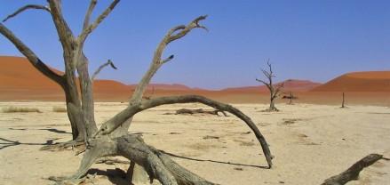 dead vlei namibia africa
