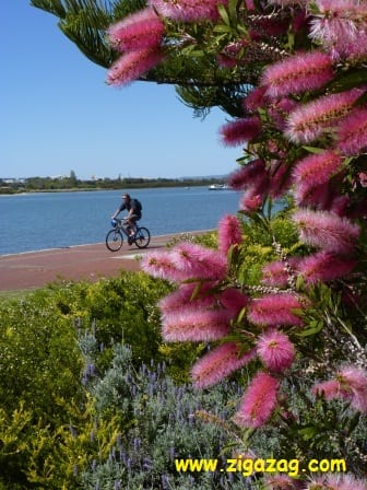 Bunbury is WA's third largest city, and a great place to live