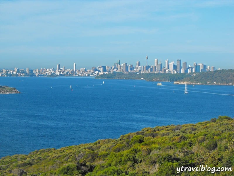 views of Sydney Harbour from North Head