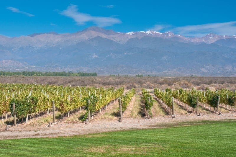 Mendoza wine region Argentina Andes Mountains