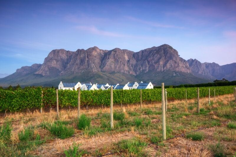 Stellenbosch wine region Cape Town South Africa