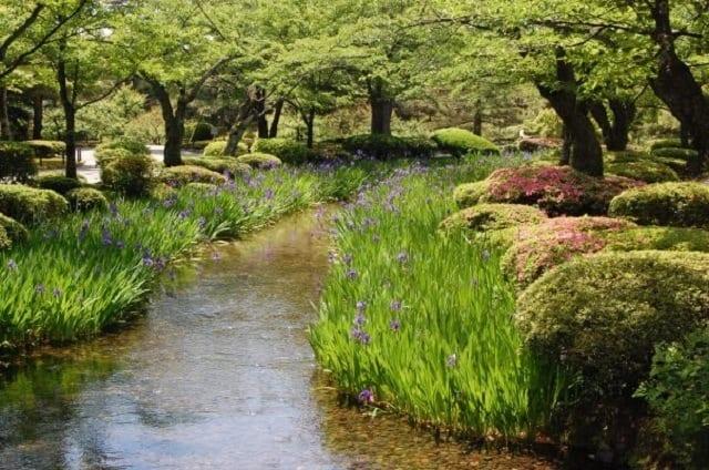 Kenroku-en Japanese Gardens in Kanazawa