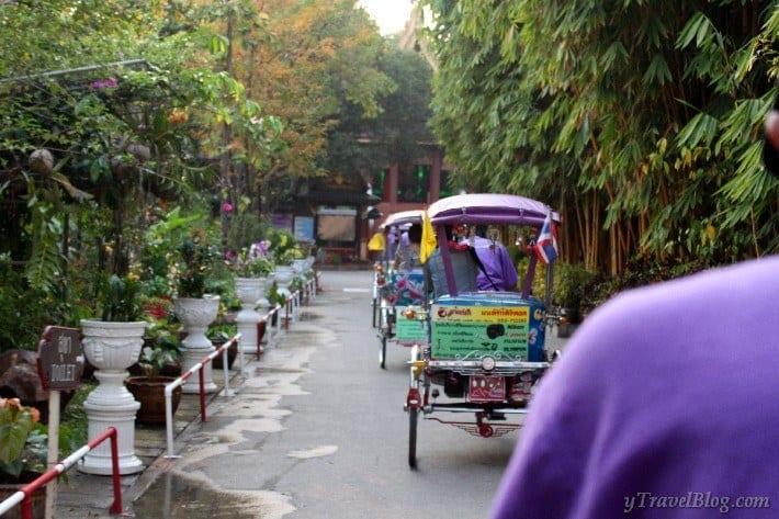 purple tricycle ride Chiang Rai