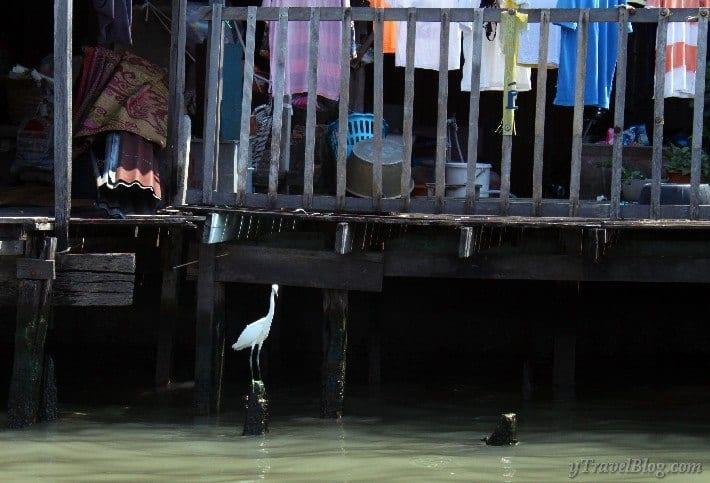 long tail boat Bangkok