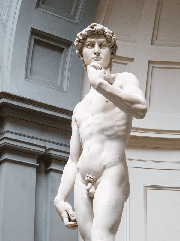 The famous David in Florence.