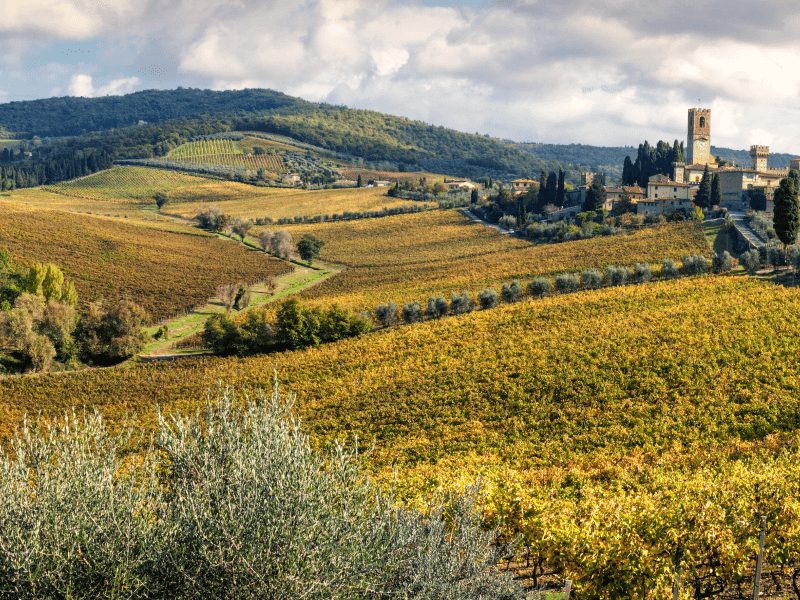 Driving through the Chianti
