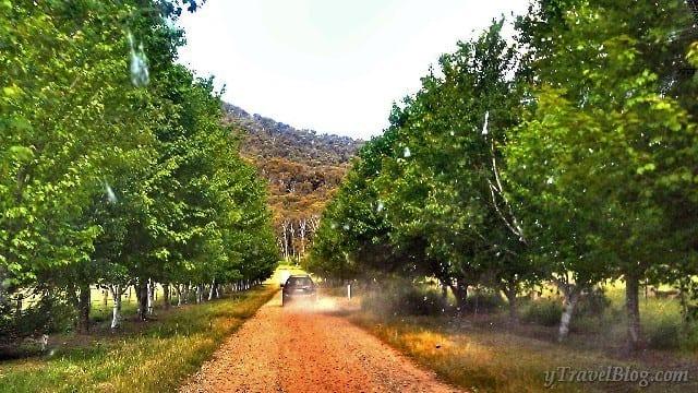 Buckland Valley Retreat