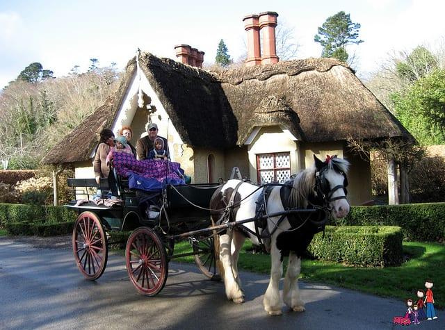 Jaunting Cart in Killarney National Park