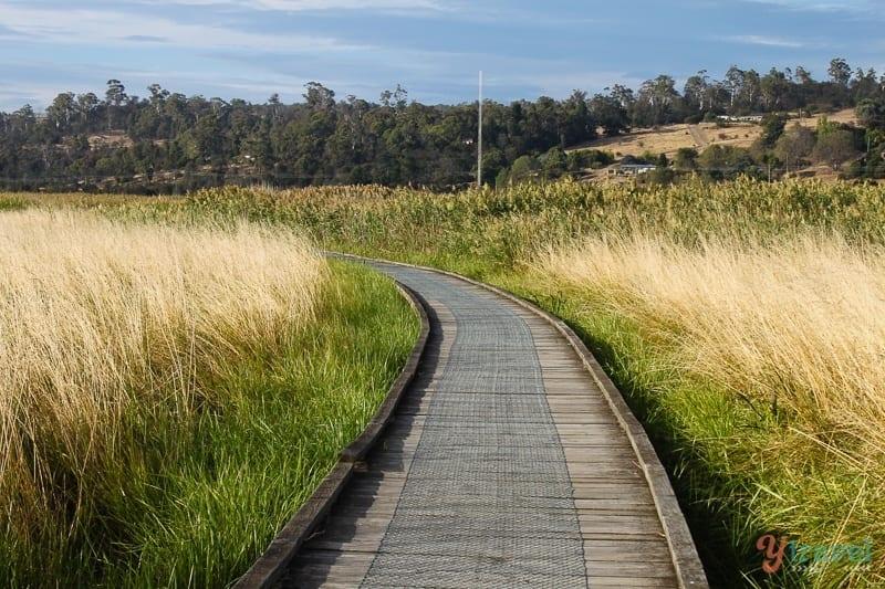 Tamar Valley Wetlands