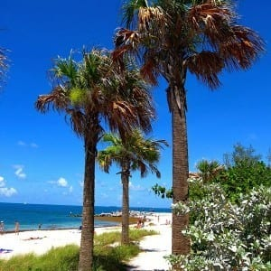 Travel Pinspiration Florida