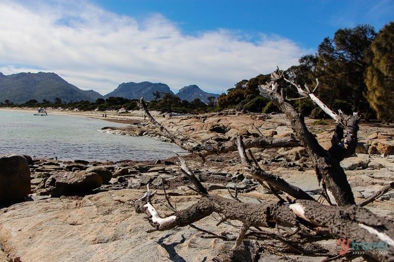 Hazards Beach Freycinet Peninsula Tasmania (20)