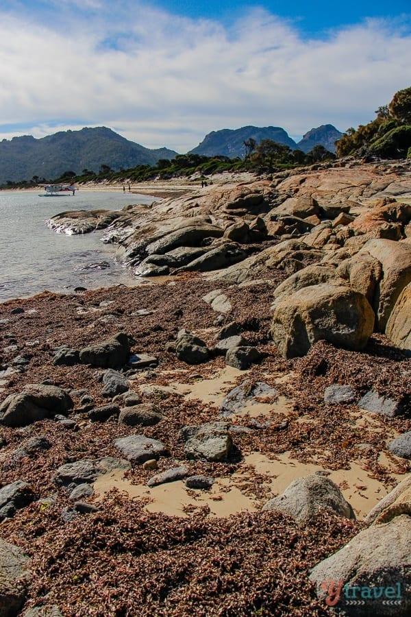 Hazards Beach Freycinet Peninsula Tasmania (21)