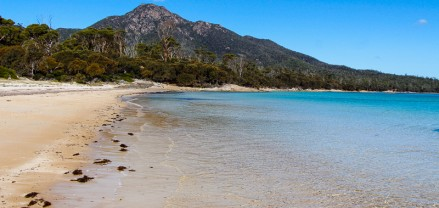 Hazards Beach Freycinet Peninsula Tasmania (27)