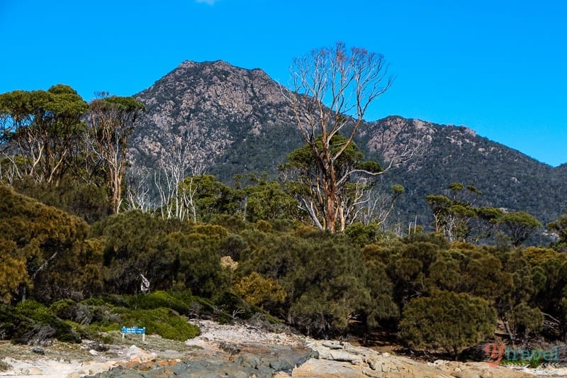 Hazards Beach Freycinet Peninsula Tasmania (31)