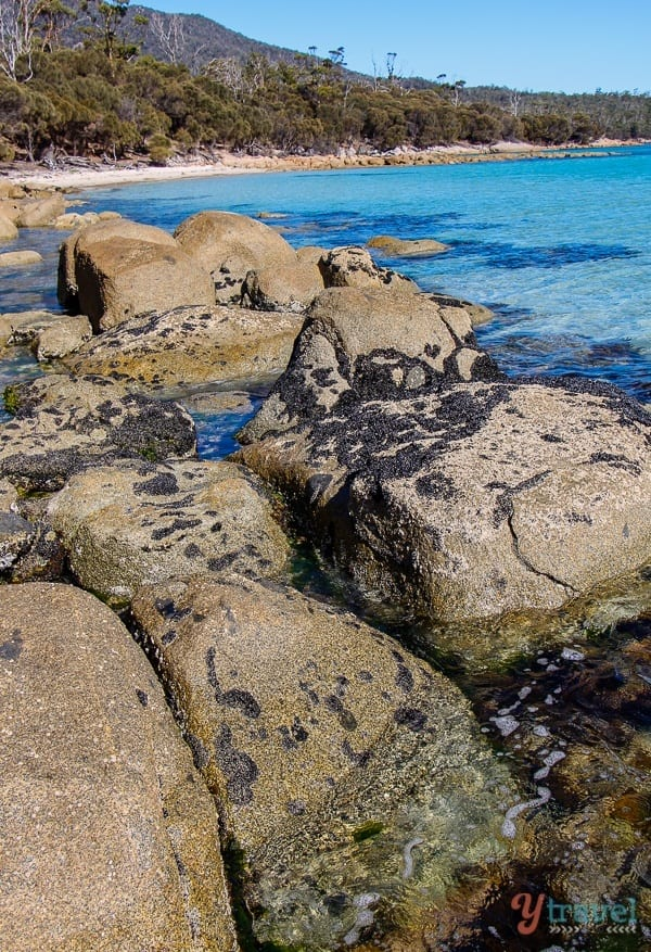 Hazards Beach Freycinet Peninsula Tasmania (37)