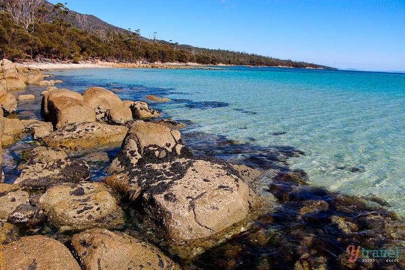 Hazards Beach Freycinet Peninsula Tasmania (38)