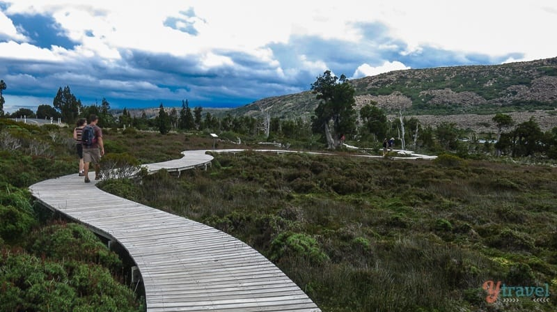 Pine Lake Walk Tasmania (2)