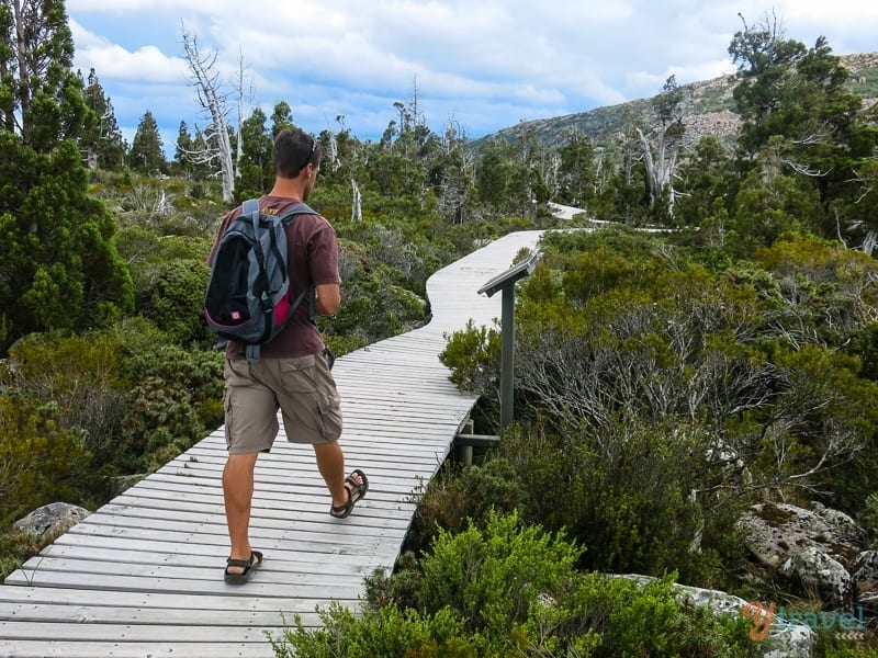 Pine Lake Walk Tasmania (4)