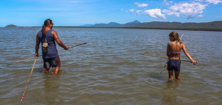Spear fishing at Cooya Beach Cairns (1)
