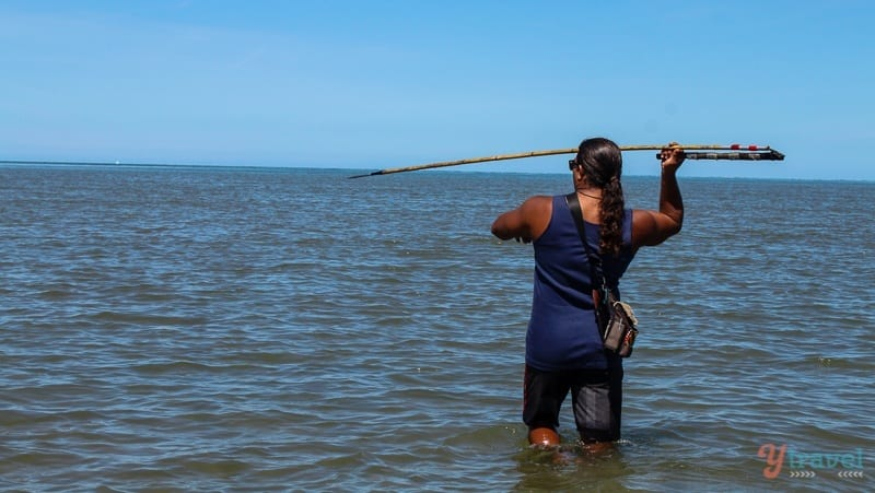 Spear fishing at Cooya Beach Cairns (3)