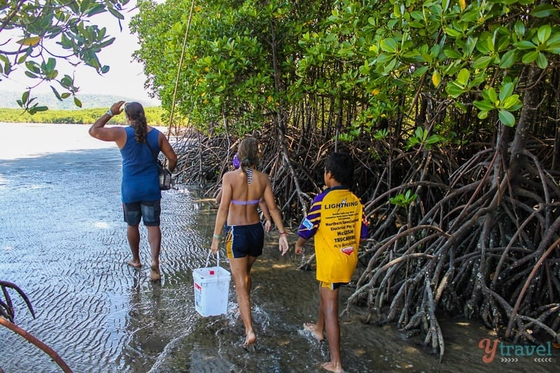 hunting in the mangroves with Brandon Walker (2)