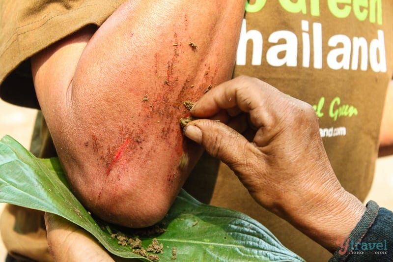 natural healing Akha hill tribe (3)