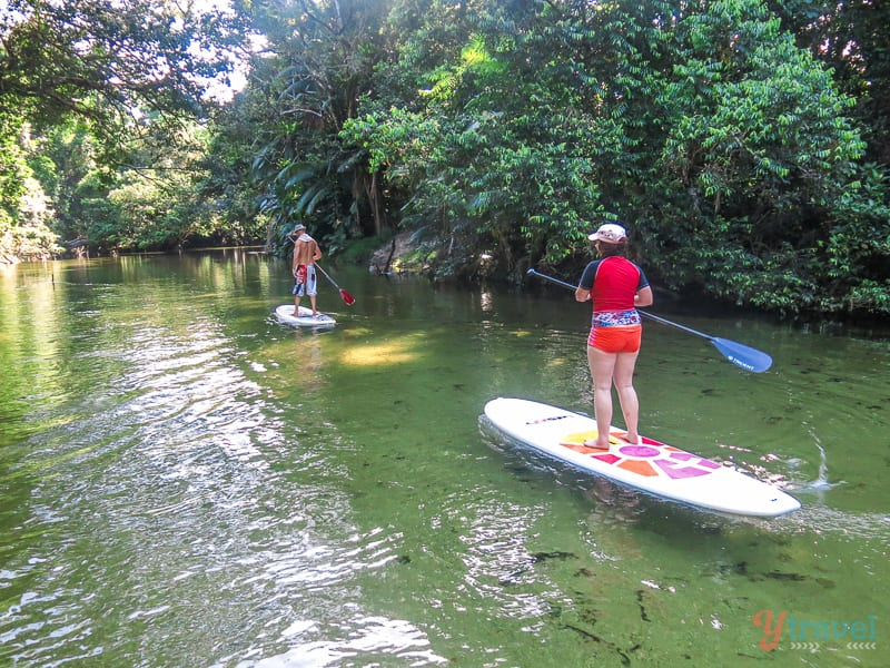 Stand Up Paddle Boarding, Port Douglas
