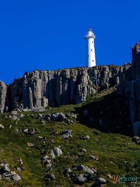 Tasman Island lighthouse (1)