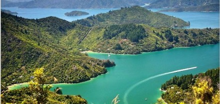 Queen Charlotte Track, New Zealand - Travel Pinspiration