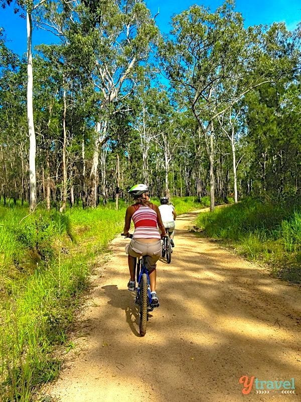 Atherton Tablelands Mountain Biking, North Queensland, Australia