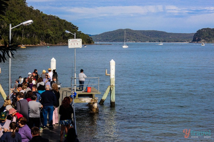 Ferry to Palm Beach from Ettalong (4)