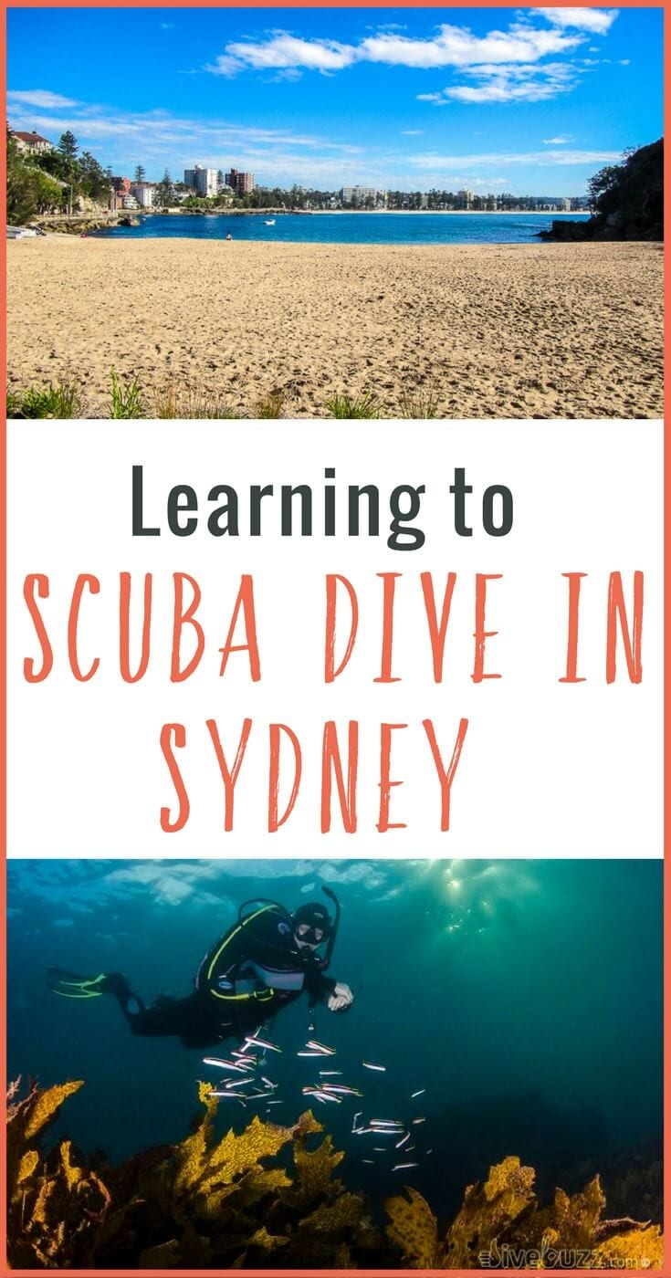 Learning to scuba dive at Shelly Beach in Sydney with Pro Dive was awesome. It's a perfect dive spot in Sydney for beginners and you're right near Manly!