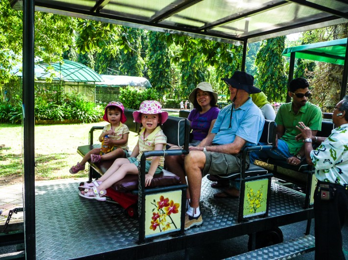 On Board the Botanic Garden Train Penang