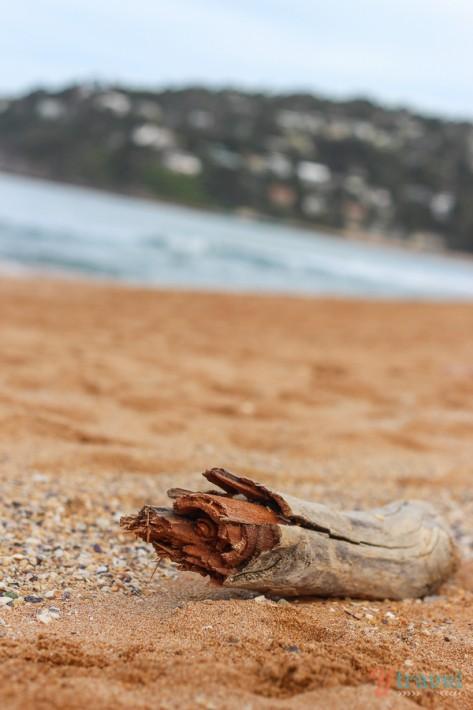 Palm Beach Sydney (12)