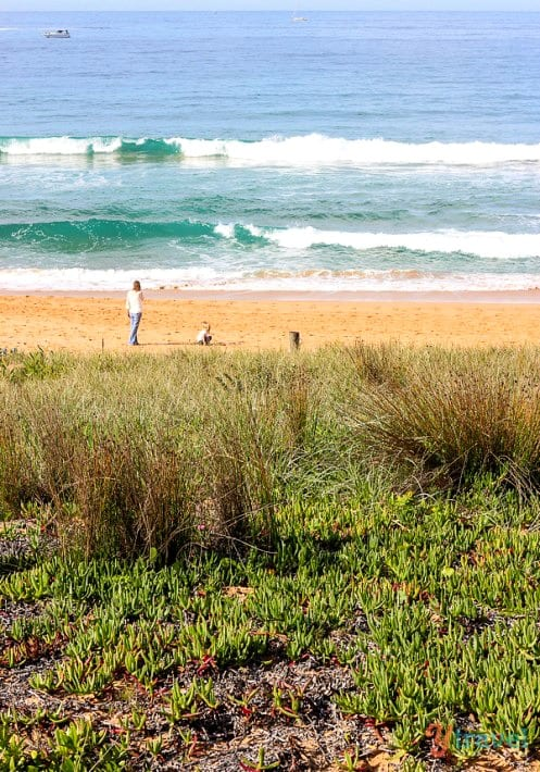 Palm Beach, Sydney, Australia