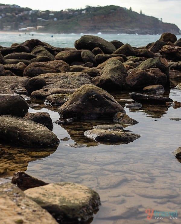 Avoca Beach Central Coast (1)