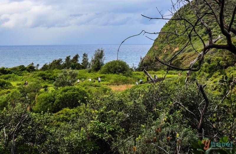 The Five Lands Walk Central Coast