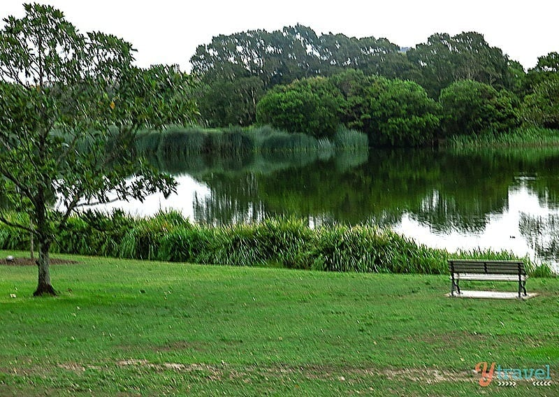 Centannial Park, Sydney