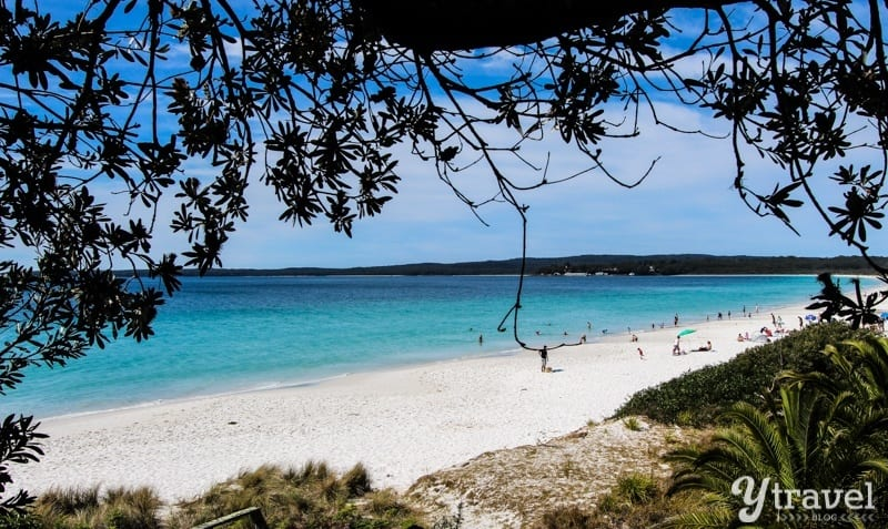 What A Day At Famous Hyams Beach Looks Like